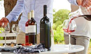 Questions -Quelle est la meilleure forme pour un verre à vin